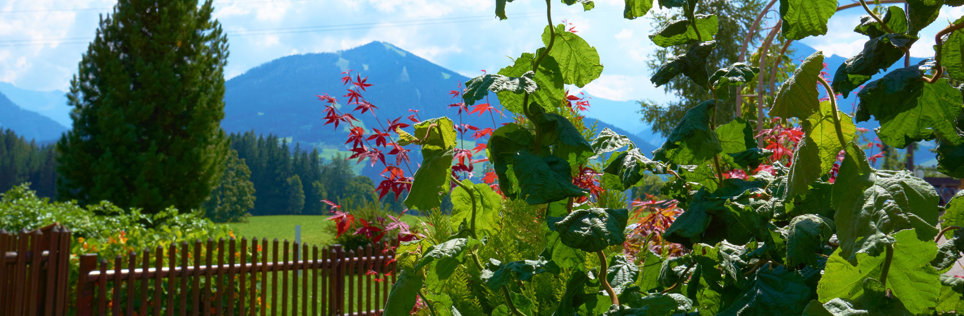 Waldesruh-Gartenparadies